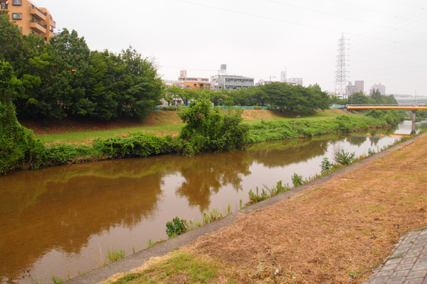 ナビロフト前の川
