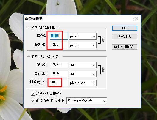 解像度の変更画面