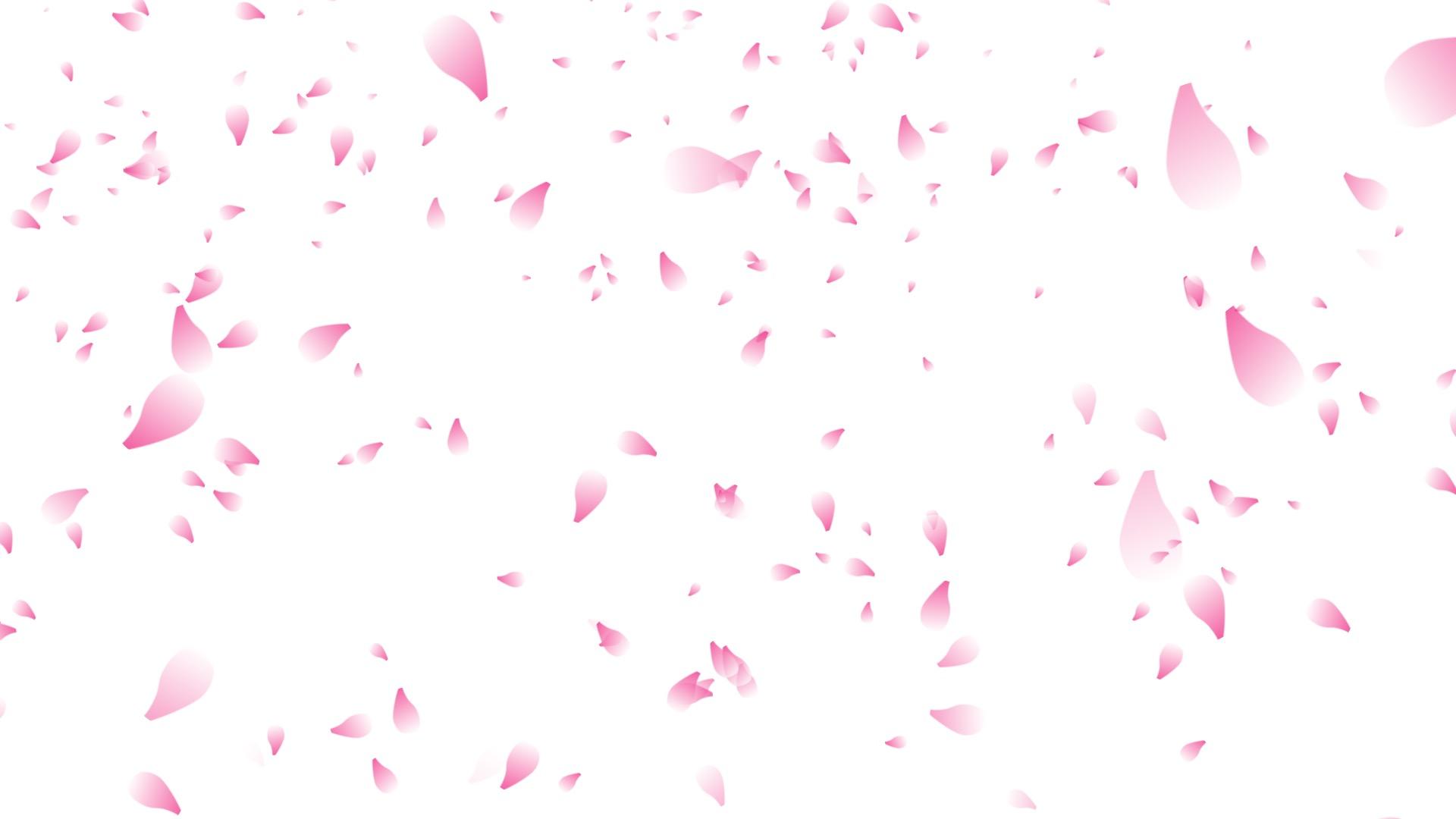 桜が降る背景動画