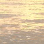 夕焼けの川面を撮影した動画素材
